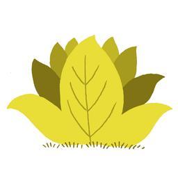 Bouquet de plantes exotiques. Source : http://data.abuledu.org/URI/5629034e-bouquet-de-plantes-exotiques