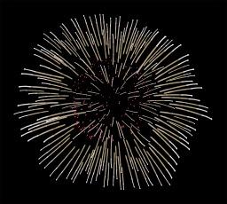 Bouquet final de feu d'artifice. Source : http://data.abuledu.org/URI/504ba256-bouquet-final-de-feu-d-artifice