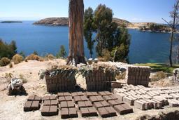 Briques d'adobe sêchant au soleil. Source : http://data.abuledu.org/URI/52d14316-briques-d-adobe-sechant-au-soleil