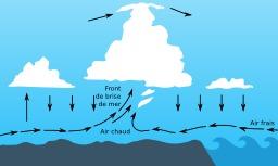 Brise de mer. Source : http://data.abuledu.org/URI/518bf1df-brise-de-mer