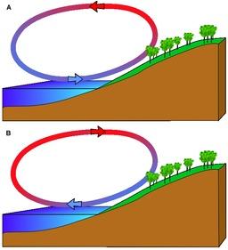 Brise de mer et brise de terre. Source : http://data.abuledu.org/URI/518be273-brise-de-mer-et-brise-de-terre