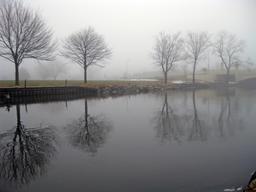 Brouillard matinal. Source : http://data.abuledu.org/URI/5854edae-brouillard-matinal