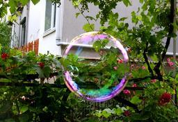 Bulle de savon. Source : http://data.abuledu.org/URI/503948a7-bulle-de-savon