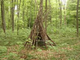 Cabane dans les bois. Source : http://data.abuledu.org/URI/52b388ba-cabane-dans-les-bois