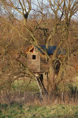 Cabane dans les bois. Source : http://data.abuledu.org/URI/59079ef2-cabane-dans-les-bois
