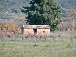 Cabanon sous son cyprès en Provence. Source : http://data.abuledu.org/URI/51ca1707-cabanon-sous-son-cypres-en-provence