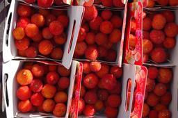 Cagettes d'arbouses. Source : http://data.abuledu.org/URI/518b635a-cagettes-d-arbouses
