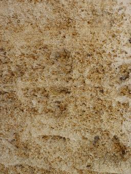 Calcaire à astéries, dit pierre de Bordeaux. Source : http://data.abuledu.org/URI/50b64b3c-calcaire-a-asteries-dit-pierre-de-bordeaux
