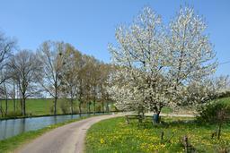 Canal de Bourgogne. Source : http://data.abuledu.org/URI/555a367d-canal-de-bourgogne