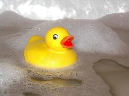 Caneton et bain de mousse. Source : http://data.abuledu.org/URI/523b72e4-caneton-et-bain-de-mousse