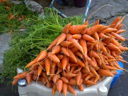 Carottes en vente. Source : http://data.abuledu.org/URI/5329def1-carottes-en-vente