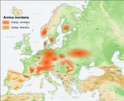 Carte de répartition de l'Arnica des montagnes. Source : http://data.abuledu.org/URI/5056bf7e-carte-de-repartition-de-l-arnica-des-montagnes