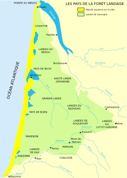 Carte des forêts landaises. Source : http://data.abuledu.org/URI/51cf438f-carte-des-forets-landaises