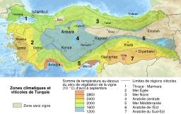 Carte des vignobles turcs. Source : http://data.abuledu.org/URI/50707a6c-carte-des-vignobles-turcs