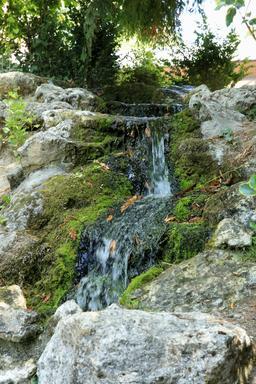 Cascade dans le parc du Clos Lucé. Source : http://data.abuledu.org/URI/55cbcd8b-cascade-dans-le-parc-du-clos-luce