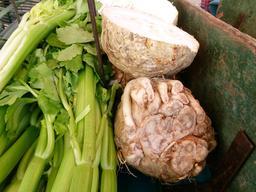 Céleri en branches et céleri-rave au marché. Source : http://data.abuledu.org/URI/546dbb60-celeri-en-branches-et-celeri-rave-au-marche