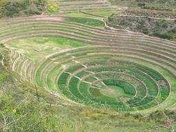 Centre de recherches agricoles incas. Source : http://data.abuledu.org/URI/50e32fb7-centre-de-recherches-agricoles-incas
