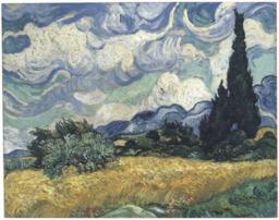 Champ de blé avec cyprès. Source : http://data.abuledu.org/URI/55149504-champ-de-ble-avec-cypres
