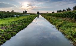 Champ de maïs et fossé de drainage. Source : http://data.abuledu.org/URI/56861272-champ-de-mais-et-fosse-de-drainage
