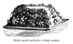 Champignon de culture sur petite meule deux pentes. Source : http://data.abuledu.org/URI/54515413-champignon-de-culture-sur-petite-meule-deux-pentes