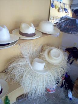 Chapeaux panamas en vente à Montecristi. Source : http://data.abuledu.org/URI/532dddea-chapeaux-panamas-en-vente-a-montecristi