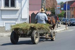 Chariot tiré par un cheval. Source : http://data.abuledu.org/URI/50426383-chariot-tire-par-un-cheval