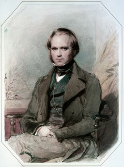 Charles Darwin. Source : http://data.abuledu.org/URI/518e375d-charles-darwin