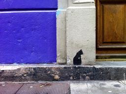 Chat noir au pochoir. Source : http://data.abuledu.org/URI/553eb5be-chat-noir-au-pochoir