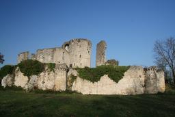 Château de Blanquefort. Source : http://data.abuledu.org/URI/532e95e4-chateau-de-blanquefort