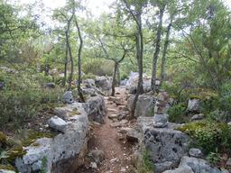Chemin bordé de murets en Ardèche. Source : http://data.abuledu.org/URI/532e9b64-chemin-borde-de-murets-en-ardeche