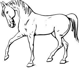 cheval. Source : http://data.abuledu.org/URI/47f57e5d-cheval