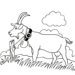 Chèvre. Source : http://data.abuledu.org/URI/52d7167e-chevre