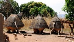 Chèvres à Cobly au Bénin. Source : http://data.abuledu.org/URI/54d3e242-chevres-a-cobly-au-benin