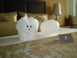 Chiot en serviettes de bain. Source : http://data.abuledu.org/URI/53425d9f-chiot-en-serviettes-de-bain