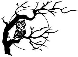 Chouette dans un arbre une nuit de pleine lune. Source : http://data.abuledu.org/URI/540781d3-chouette-dans-un-arbre-une-nuit-de-pleine-lune