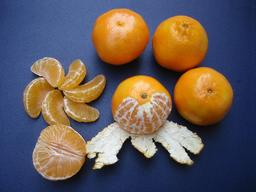 Cinq clémentines. Source : http://data.abuledu.org/URI/52b57bce-cinq-clementines