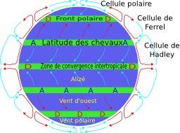 Circulation atmosphérique. Source : http://data.abuledu.org/URI/52c3b018-circulation-atmospherique