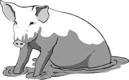Cochon dans la boue. Source : http://data.abuledu.org/URI/5049c5c9-cochon-dans-la-boue