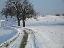 Colline sous la neige en Hongrie. Source : http://data.abuledu.org/URI/56c31359-colline-sous-la-neige-en-hongrie