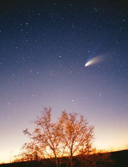 Comète de Hale-Bopp. Source : http://data.abuledu.org/URI/52f9649c-comete-de-hale-bopp