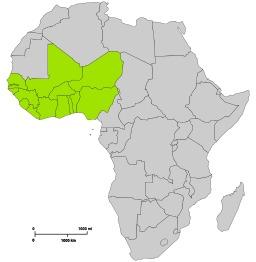 Communauté Economique des Etats de l'Afrique de l'Ouest. Source : http://data.abuledu.org/URI/52d28e81-communaute-economique-des-etats-de-l-afrique-de-l-ouest
