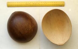 Coque de calebasse. Source : http://data.abuledu.org/URI/53811b74-coque-de-calebasse
