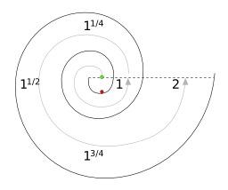 Coquille de gastéropode. Source : http://data.abuledu.org/URI/538b991d-coquille-de-gasteropode