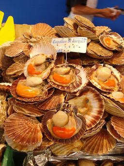 Coquilles Saint-Jacques. Source : http://data.abuledu.org/URI/5460f746-coquilles-saint-jacques