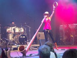 Cor des Alpes en concert. Source : http://data.abuledu.org/URI/5300a94e-cor-des-alpes-en-concert
