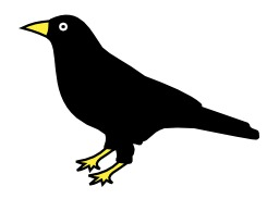 Corbeau. Source : http://data.abuledu.org/URI/5277f377-corbeau