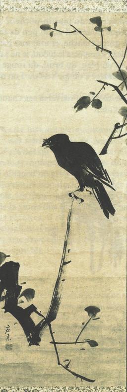 Corbeau sur une branche. Source : http://data.abuledu.org/URI/521afd8e-corbeau-sur-une-branche