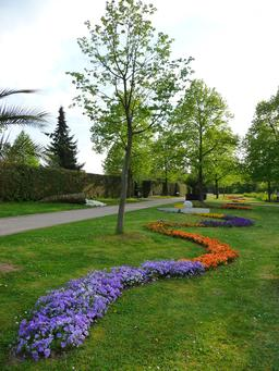 Cornes d'abondance fleuries. Source : http://data.abuledu.org/URI/573d69ef-cornes-d-abondance-fleuries