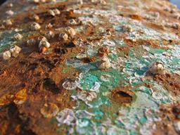 Corrosion d'une coque de bateau. Source : http://data.abuledu.org/URI/50c261dd-corrosion-d-une-coque-de-bateau