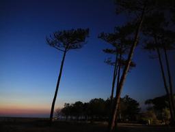 Coucher de soleil au Petit Nice. Source : http://data.abuledu.org/URI/53d2559a-coucher-de-soleil-au-petit-nice